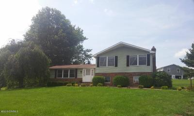 Bloomsburg Single Family Home For Sale: 95 Amron Dr