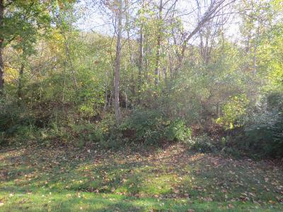 Bloomsburg Residential Lots & Land For Sale: Lot 167 Scenic Avenue
