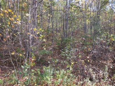 Bloomsburg Residential Lots & Land For Sale: Lot 171 Scenic Ave