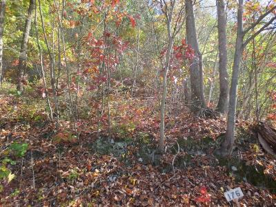 Bloomsburg Residential Lots & Land For Sale: Lot 176 Scenic