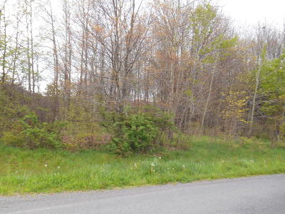Drums PA Residential Lots & Land For Sale: $75,000