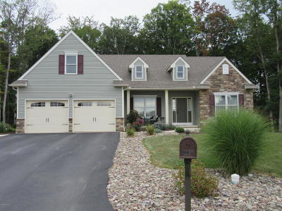 Single Family Home For Sale: 319 Links Ct