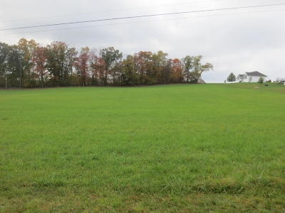 Residential Lots & Land For Sale: Lot #12 Cabin Run