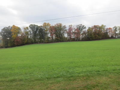 Residential Lots & Land For Sale: Lot #13 Cabin Run