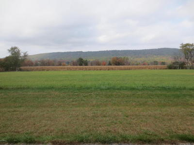 Residential Lots & Land For Sale: Lot #20 Carol Dr