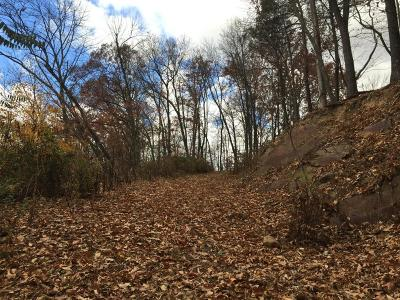 Residential Lots & Land For Sale: 84 Red Rock