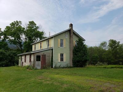 Nescopeck PA Single Family Home For Sale: $89,000