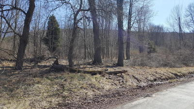 Residential Lots & Land For Sale: Mountain Shadow Lane