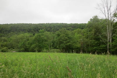 Residential Lots & Land For Sale: Catawissa Creek Road