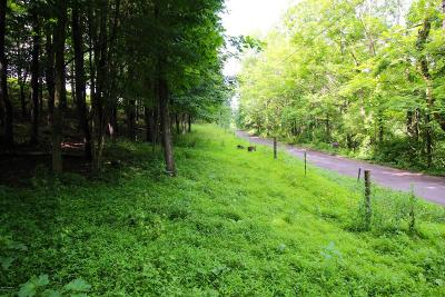 Bloomsburg Residential Lots & Land For Sale: Humpty Dumpty Rd