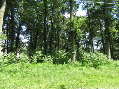 Residential Lots & Land For Sale: Lot#171 Evergreen Lane
