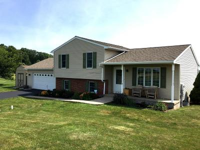 Bloomsburg Single Family Home For Sale: 724 Millertown Rd