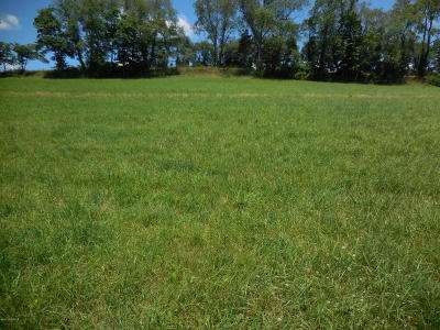 Bloomsburg Residential Lots & Land For Sale: Lot # 6 Ivey Drive