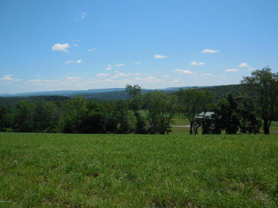 Bloomsburg Residential Lots & Land For Sale: Lot #2 Reichard Drive