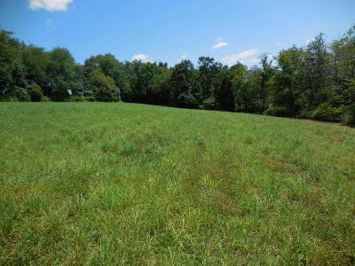 Bloomsburg Residential Lots & Land For Sale: Lot#1 Reichard Drive