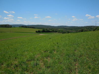Bloomsburg Residential Lots & Land For Sale: Lot #3 Reichard Drive