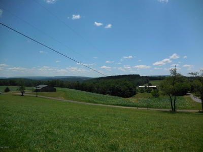 Bloomsburg Residential Lots & Land For Sale: Lot #7 Ivey Drive