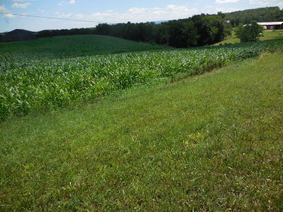 Bloomsburg Residential Lots & Land For Sale: Lot #8 Ivey Drive