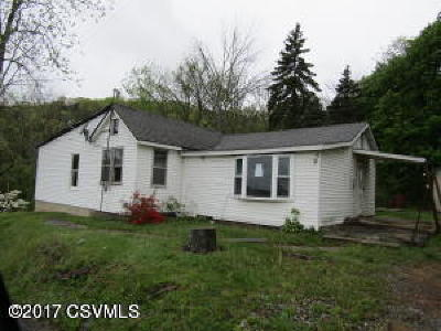 Bloomsburg Single Family Home For Sale: 441 Ridge Rd
