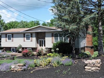 Bloomsburg Single Family Home For Sale: 79 Fowlersville Rd