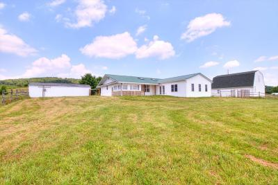 Single Family Home For Sale: 159 Trivelpiece Rd