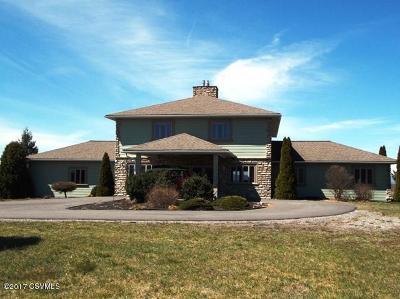 Danville Single Family Home For Sale: 282 Hilkert Rd