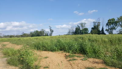 Residential Lots & Land For Sale: Beily's Road