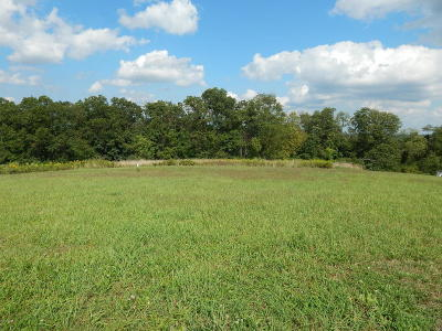Danville Residential Lots & Land For Sale: 310 Sunland