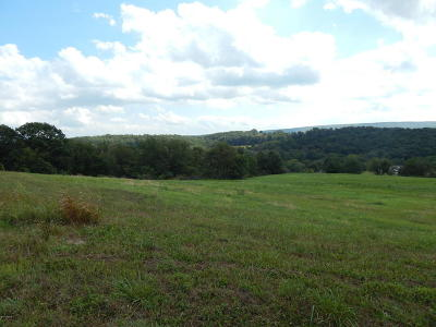 Danville Residential Lots & Land For Sale: Lot #2 Hilkert