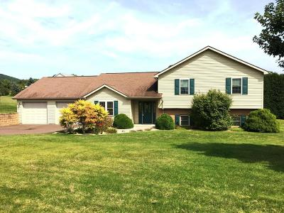 Berwick PA Single Family Home For Sale: $229,900