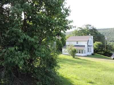 Single Family Home For Sale: 442 E Shamokin Street