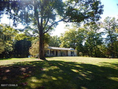 Single Family Home For Sale: 106 Schoch Rd