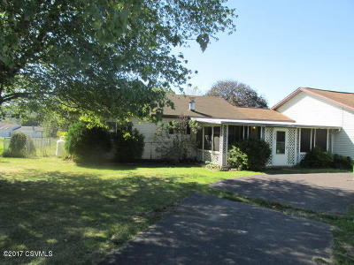 Single Family Home For Sale: 1008 Fair Street