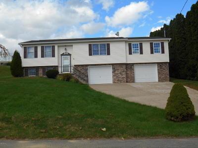 Berwick Single Family Home For Sale: 1119 Barbara Ln