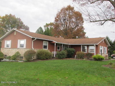 Bloomsburg Single Family Home For Sale: 146 Sunken Heights Avenue