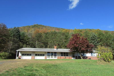 Danville Single Family Home For Sale: 4365 Snydertown Rd