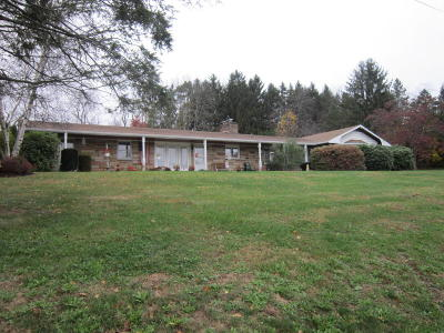 Bloomsburg Single Family Home For Sale: 7003 Scenic