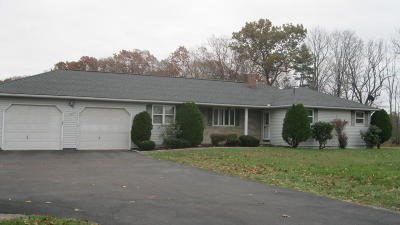 Berwick Single Family Home For Sale: 48 Municipal