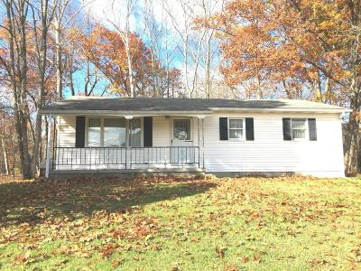 Single Family Home For Sale: 2929c State Route 42