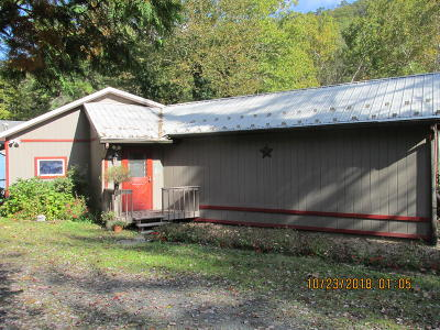Catawissa PA Single Family Home For Sale: $250,000