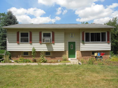 Nescopeck PA Single Family Home For Sale: $180,000