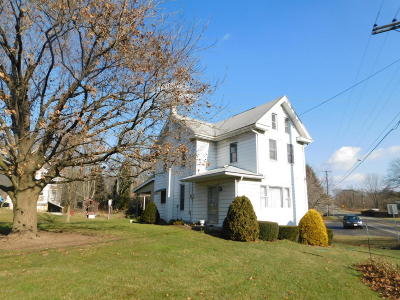 Single Family Home For Sale: 4933 State Route 225