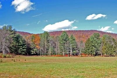 Benton Residential Lots & Land For Sale: 896 Pa-118 Highway