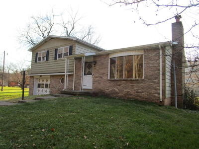Shickshinny PA Single Family Home For Sale: $165,000