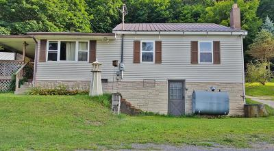 Single Family Home For Sale: 327 Amish School Rd