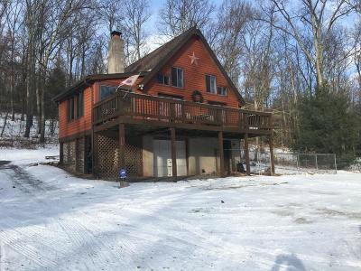 Single Family Home For Sale: 123 Hemlock Springs Dr