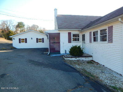 Single Family Home For Sale: 346 Didiums Lane