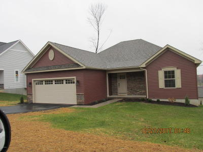 Bloomsburg Single Family Home For Sale: 708 Country Club Dr.