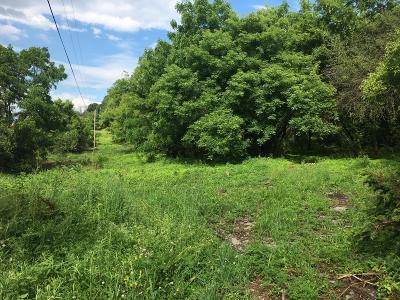 Residential Lots & Land For Sale: Mountain Road