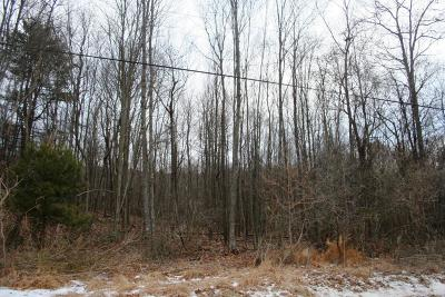 Benton Residential Lots & Land For Sale: Lot 1 Rt 239 Hwy